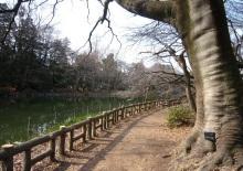 武蔵野市観光推進機構事務局のブログ