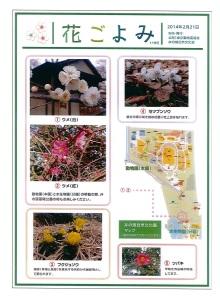 井の頭自然文化園の『ほっとイベント』と『花ごよみ』