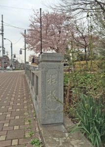 桜橋(20160402)