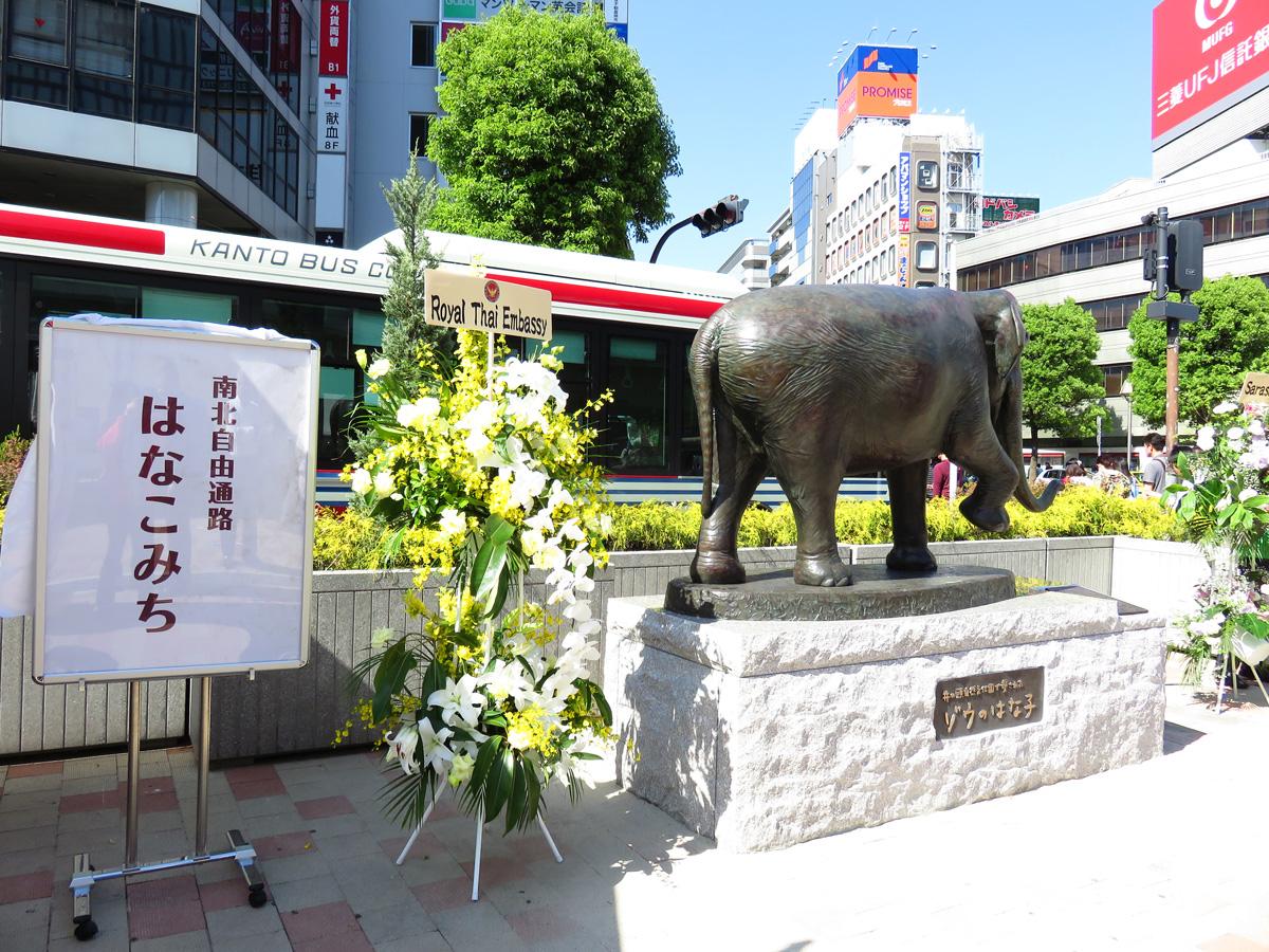 【吉祥寺駅フェスタ開催日です☀】ハモ朝帰りに、是非お立ち寄りください!