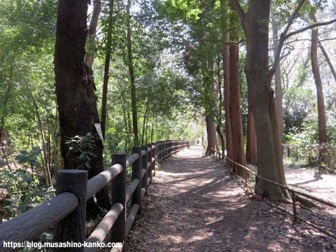 清流と緑でリフレッシュ!! 玉川上水緑道を歩く(後編)