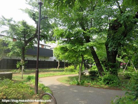新緑を楽しもう♪ 吉祥寺北町を歩く