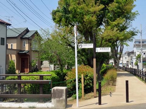 新緑を楽しもう 吉祥寺北町を歩く